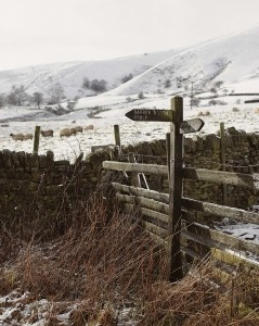 Wooden road sign post and winter landscape