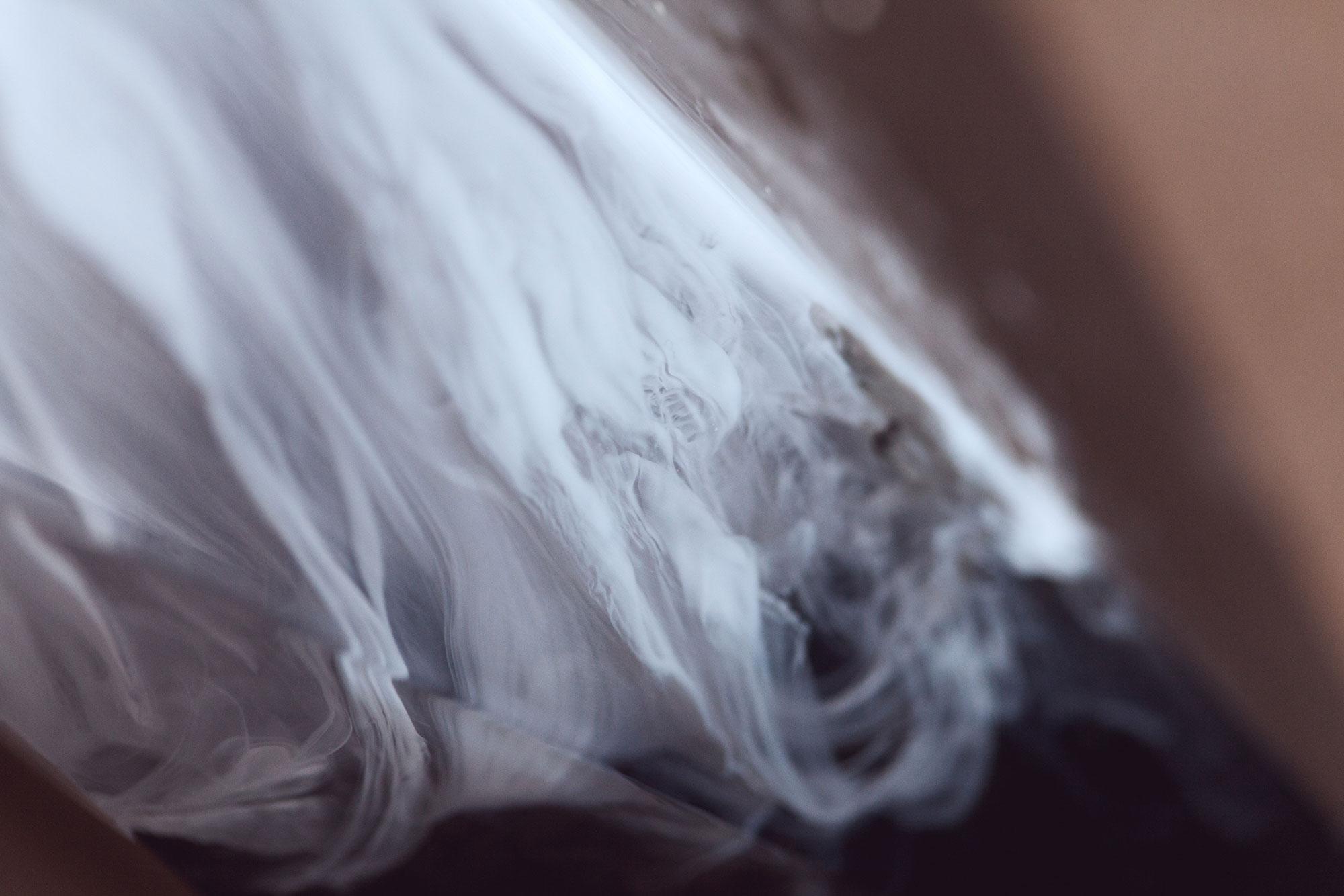 Lichens integrated with Jesmonite