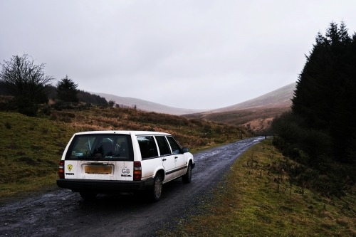 Forest + Found's Volvo Estate
