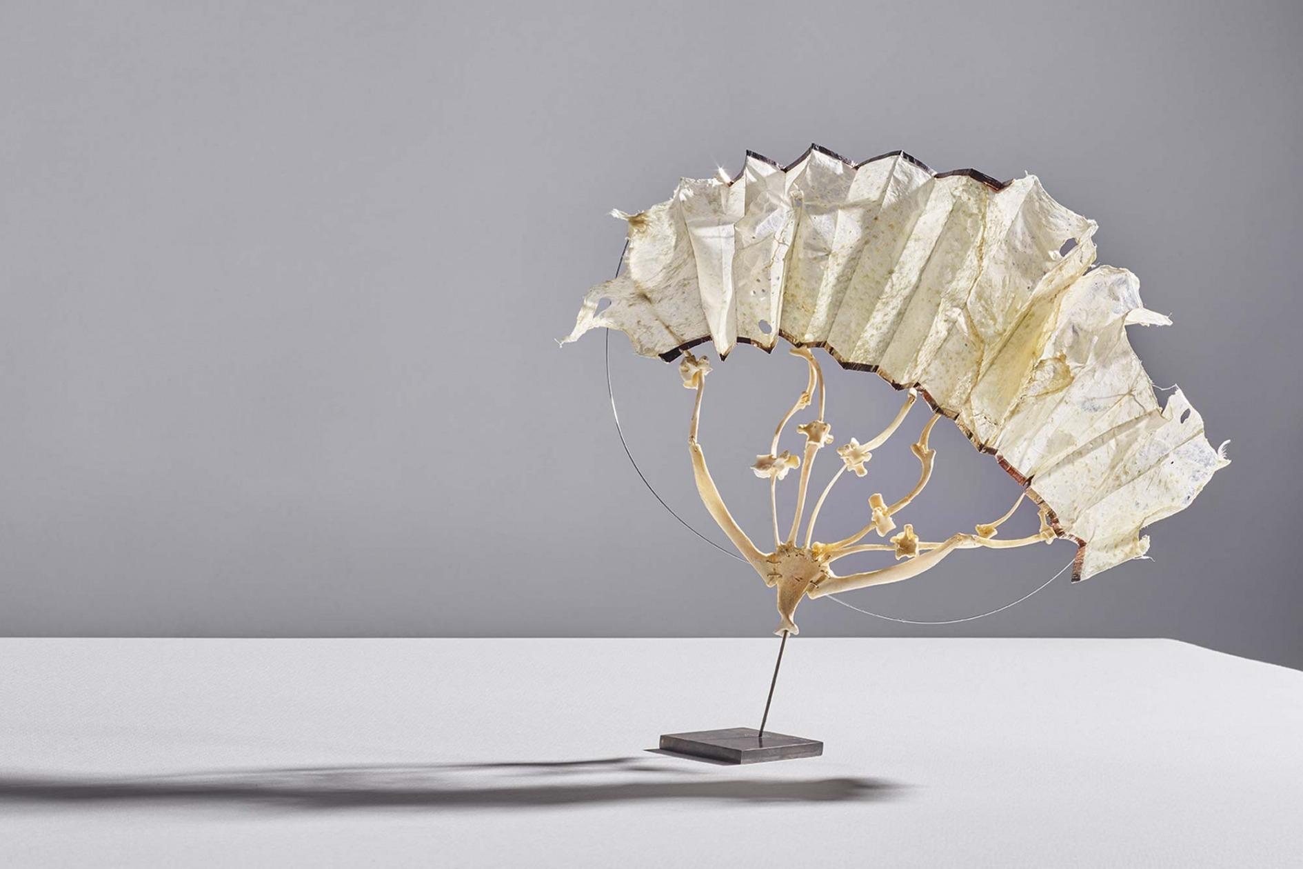A chicken-skin sculpture by Kari Furre