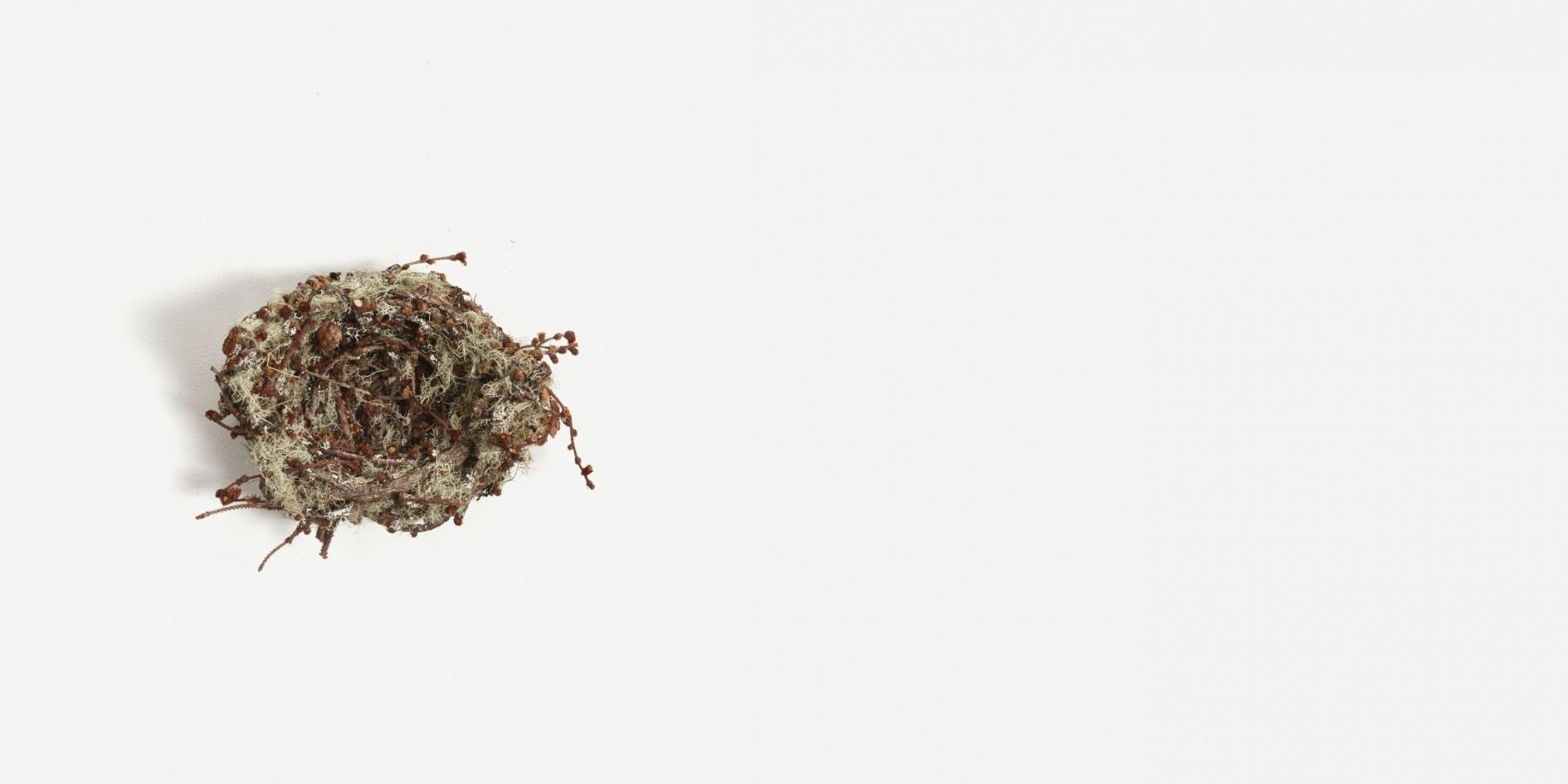 Medium Lichen Nest by Joe Hogan at The New Craftsmen